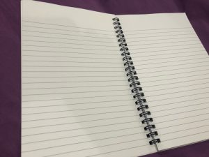 notebook view